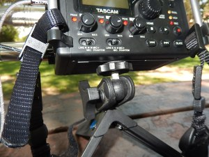 REI Ultrapod supporting Tascam DR-60D DAR