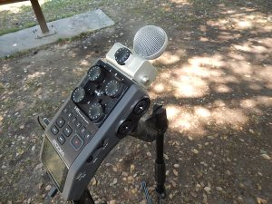 MS (mid-side) microphone capsule option on Zoom H6 DAR